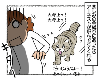 03082017_cat2mini.jpg