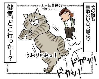 05092017_cat4.jpg