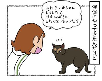 06092017_cat2.jpg
