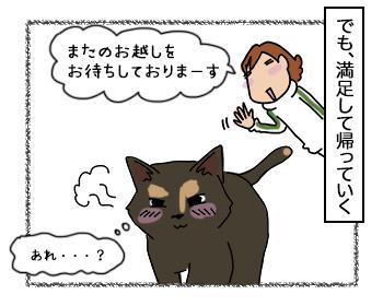 06092017_cat4.jpg