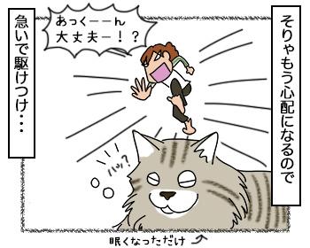 07092017_cat3.jpg