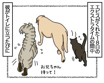 09082017_cat3mini.jpg