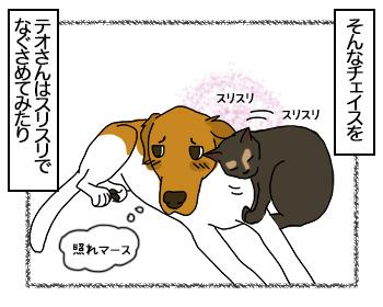 11082017_cat2mini.jpg