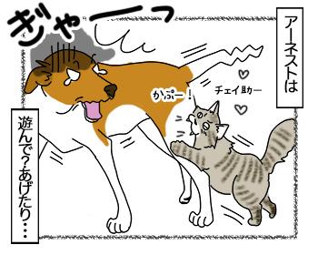 11082017_cat3mini.jpg