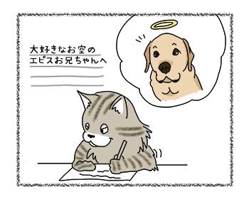 11092017_cat1.jpg
