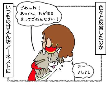 13092017_cat2.jpg