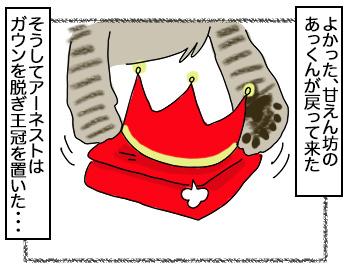 13092017_cat3.jpg