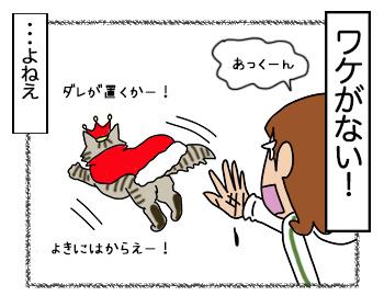 13092017_cat4.jpg