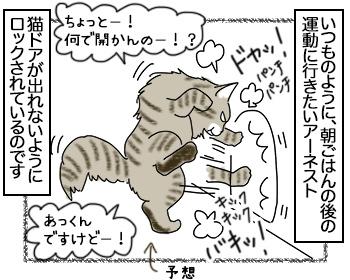 14082017_cat3mini.jpg