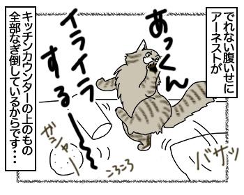 14082017_cat4mini.jpg