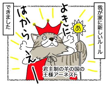 14092017_cat1.jpg