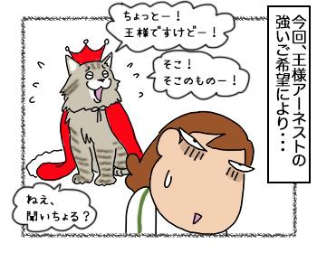 14092017_cat3.jpg