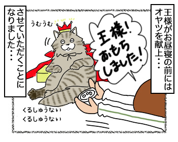 14092017_cat4.jpg