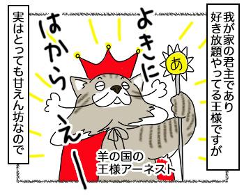 17092017_cat1.jpg
