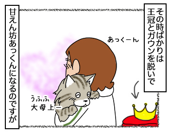 17092017_cat3.jpg