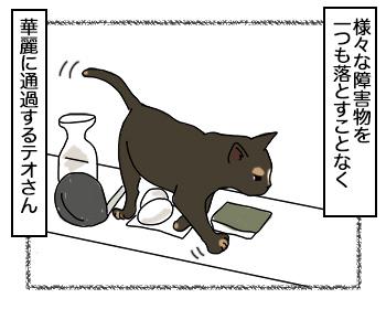19092017_cat1.jpg