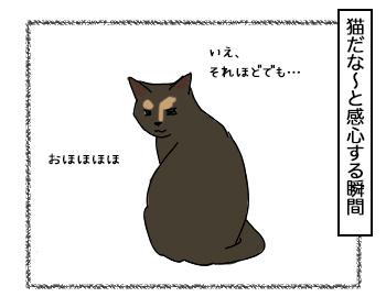 19092017_cat2.jpg