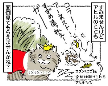 20092017_cat4.jpg