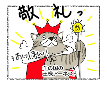 20092017_cat5.jpg