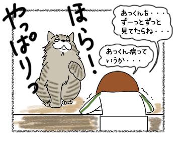 21082017_cat5mini.jpg