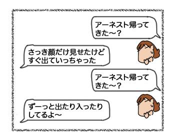 28082017_cat1mini.jpg