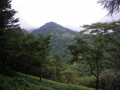 途中からの笠取山