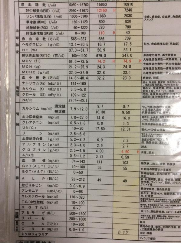 2017.7.27 血液検査