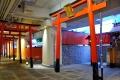 葵稲荷神社11