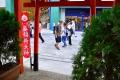 葵稲荷神社23