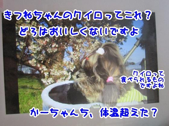 0805-10_20170805150032f4e.jpg