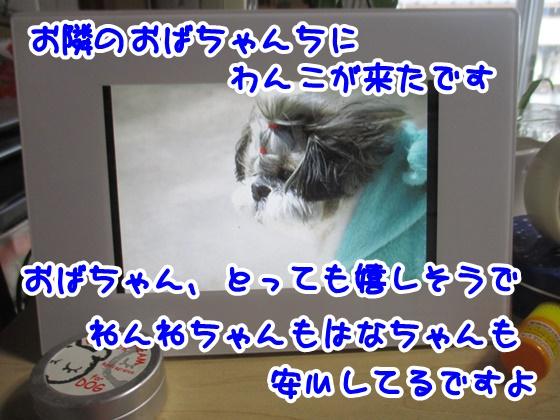 0913-09_201709131919293b3.jpg