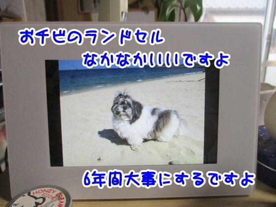 0915-10_2017091517211830e.jpg