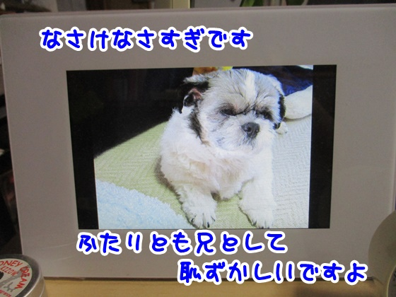 0921-10_201709211936561e5.jpg
