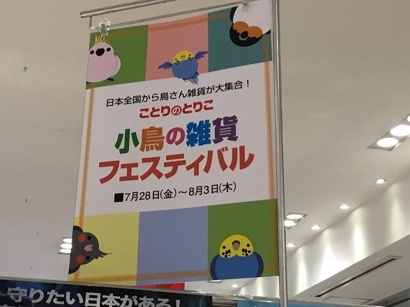 ことりのとりこ 2017-7-30-1