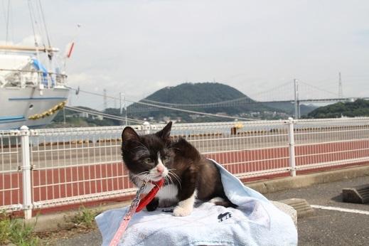 海王丸 2017-8-18-3