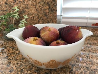 Present Figs