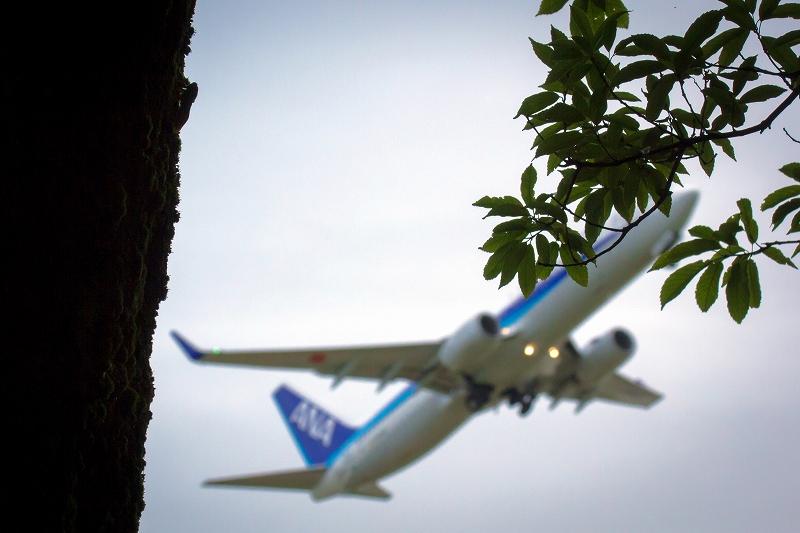 富山空港H29_8_12⑥