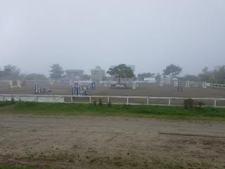 夏の乗馬大会_02