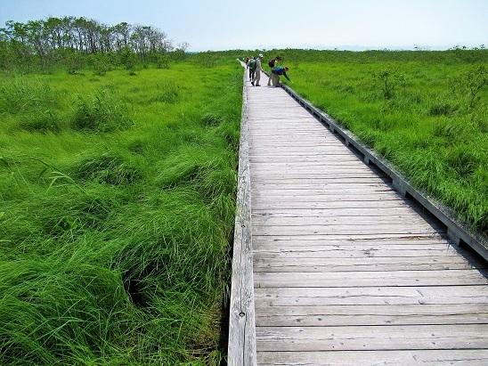釧路湿原ウォーク