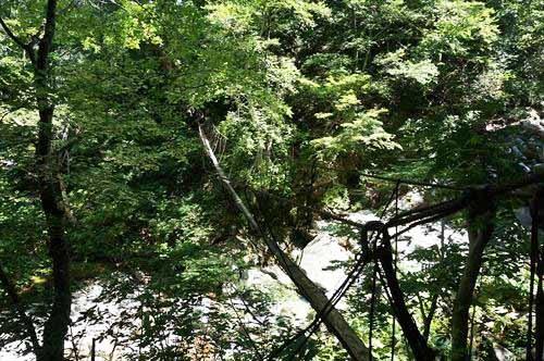 14大玉吊橋