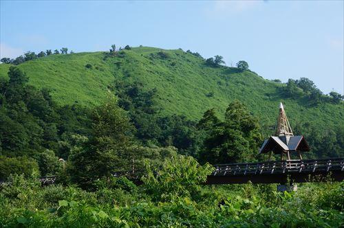 16ワラビ山