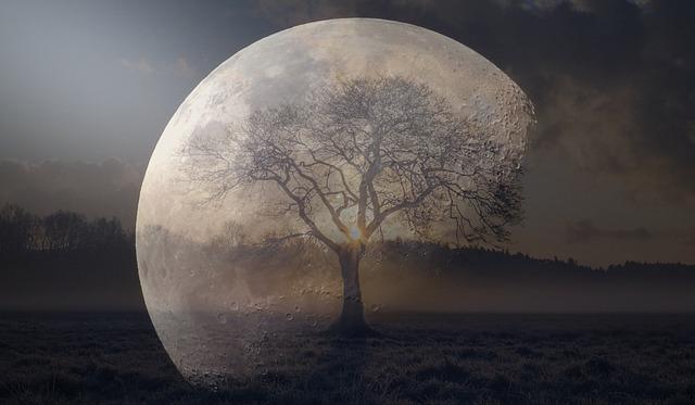 moon-2261261_640.jpg