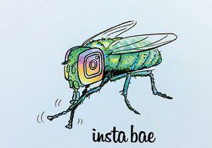 Insta_Bae.jpg