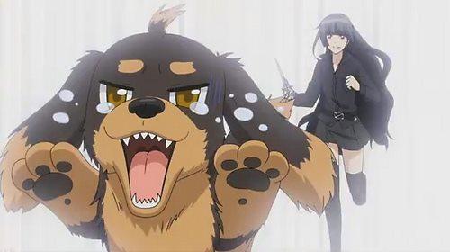 【悲報】ツイッター民「犬が溺れてたから助けました」←なぜか叩かれる