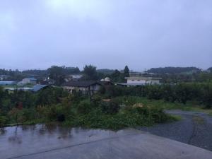19雨 (2)