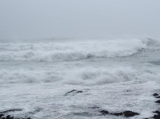 台風の海岸