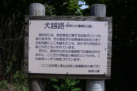 20160703 oomuro 009
