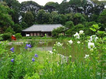 2017年7月9日撮影 浄瑠璃寺阿弥陀堂