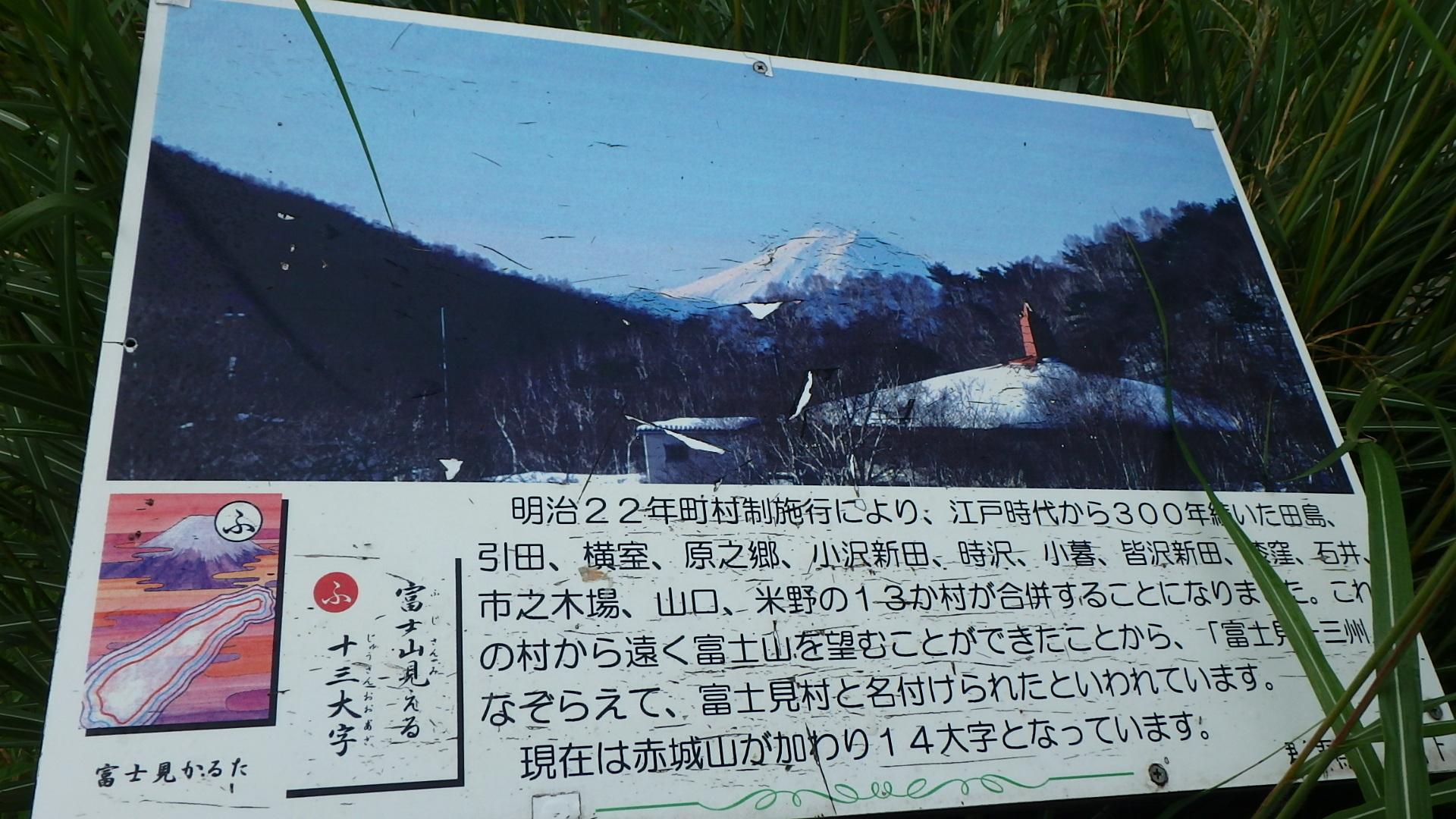 P8130798.jpg