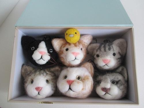 ぎゅうぎゅう猫ちゃんたちとピヨ太